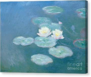 Aquatic Plant Canvas Print - Waterlilies Evening by Claude Monet