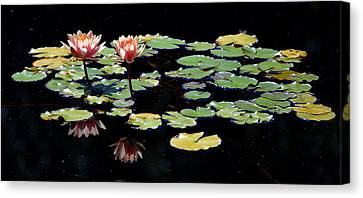 Canvas Print featuring the painting Waterlily Panorama by Marilyn Smith