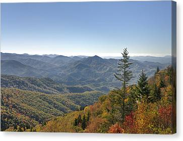 Waterrock Knob On Blue Ridge Parkway Canvas Print by Darrell Young