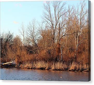 Northeast River Banks Canvas Print