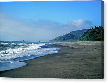 Canvas Print - Water's Edge by Ric Schafer