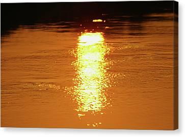 Watery Sunset Canvas Print by Martina Fagan