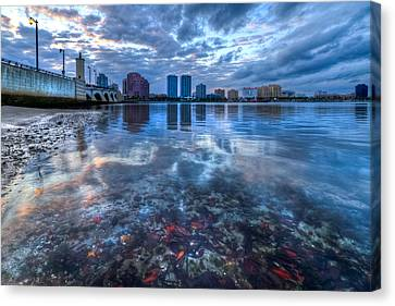 Watery Treasure Canvas Print by Debra and Dave Vanderlaan