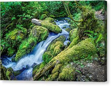 Crater Lake National Park Canvas Print - Watson Creek Falls Oregon by Scott McGuire