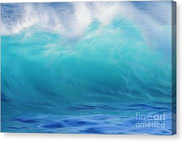 Wave And Windspray Canvas Print by Vince Cavataio - Printscapes