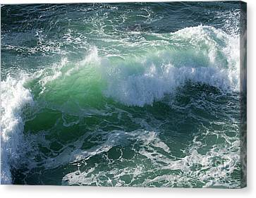 Wave At Montana De Oro Canvas Print by Michael Rock