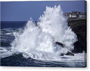 Wave Energy Canvas Print by Tim Moore