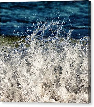 Wave4 Canvas Print