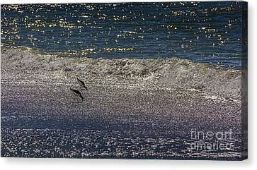 Waves And Sparkling Sand Canvas Print by Marvin Spates
