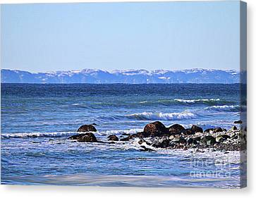 Waves At Argentia  Canvas Print by Barbara Griffin