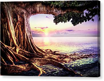 Waves At Dawn Canvas Print by Debra and Dave Vanderlaan
