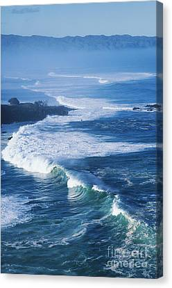 Waves At Waimea Bay Canvas Print by Ali ONeal - Printscapes