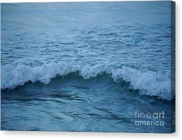 waves I Canvas Print by HD Connelly