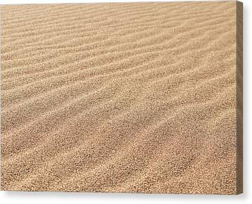 Waves In The Sand Canvas Print