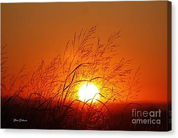Waving Sun Canvas Print