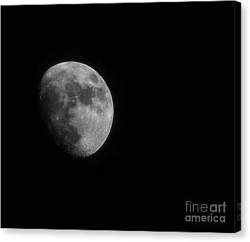 Waxing Gibbous - 3 Canvas Print by David Bearden