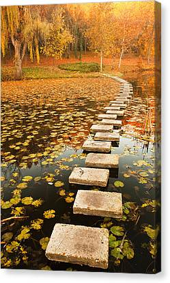 Way In The Lake Canvas Print by Evgeni Dinev