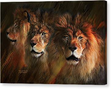 Lions Canvas Print - Way Of The Lion by Carol Cavalaris