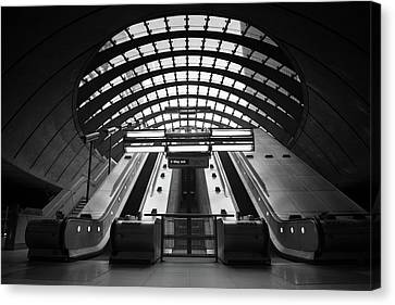 Canary Canvas Print - Way Out by Ivo Kerssemakers