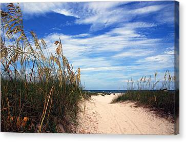 Way Out To The Beach Canvas Print by Susanne Van Hulst