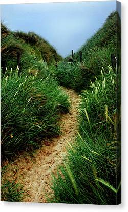 Way Through The Dunes Canvas Print by Hannes Cmarits