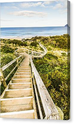 Way To Neck Beach Canvas Print by Jorgo Photography - Wall Art Gallery