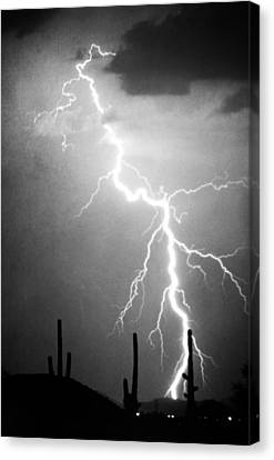Way Too Close For Comfort Bw Print Canvas Print by James BO  Insogna
