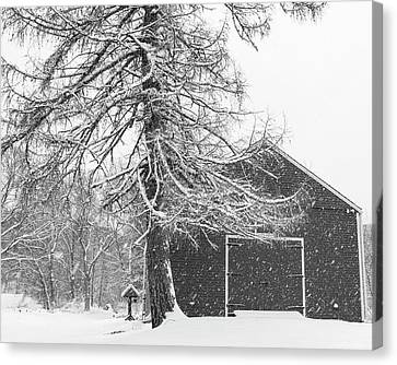 Wayside Inn Grist Mill Canvas Print - Wayside Inn Red Barn Covered In Snow Storm Reflection Black And White by Toby McGuire