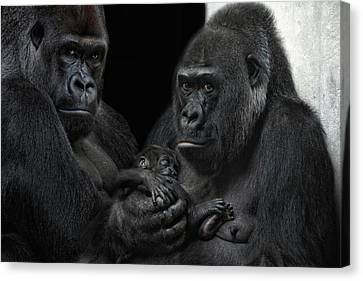 We Are Family Canvas Print by Joachim G Pinkawa