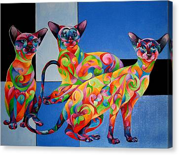 We Are Siamese If You Please Canvas Print by Sherry Shipley