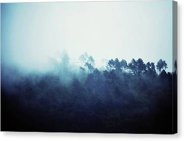 We Dreamed Of Mountains Canvas Print by Studio Yuki
