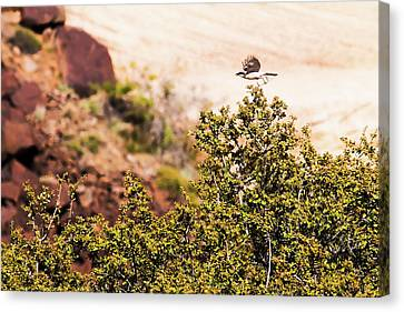 Canvas Print featuring the photograph We Have Takeoff by Onyonet  Photo Studios