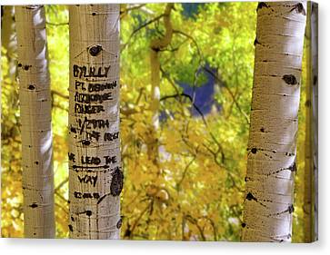 Canvas Print featuring the photograph We Lead The Way - Aspens - Colorado - Airborne Ranger by Jason Politte