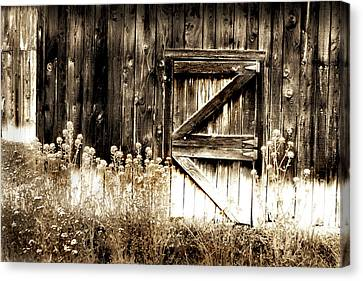 Weathered Barn Door Canvas Print by Gray  Artus