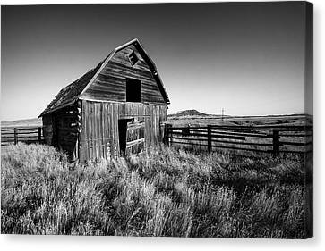 Aging Canvas Print - Weathered Barn by Todd Klassy