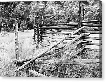 Bighorn Canyon National Recreation Area Canvas Print - Weathered Fence by Larry Ricker