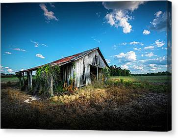 Weathered Canvas Print by Marvin Spates
