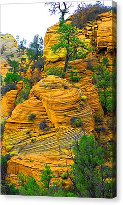 Weathered Rock Canvas Print by Dennis Hammer