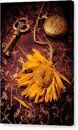 Weathered Sunflower With Gold Key Canvas Print by Garry Gay