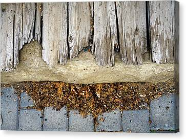 Canvas Print featuring the photograph Weathered by Tom Romeo