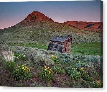 Old Cabins Canvas Print - Weathered With Time by Leland D Howard