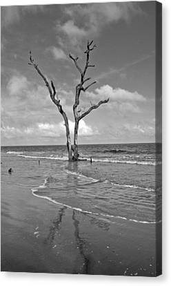 Weathering The Tide Canvas Print by Donnie Smith