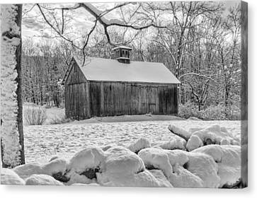 Weathering Winter Bw Canvas Print by Bill Wakeley