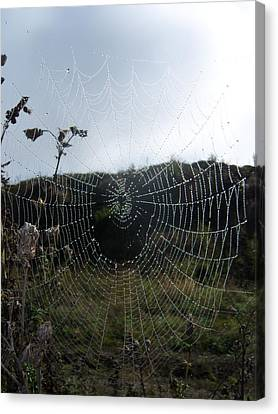 Web Browser Canvas Print by Ken Day
