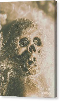 Webs And Dead Heads Canvas Print