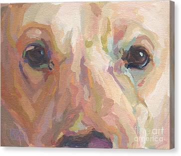 Webster Canvas Print by Kimberly Santini