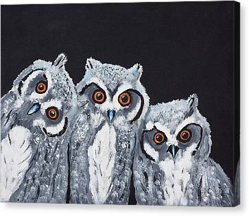 Wee Owls Canvas Print