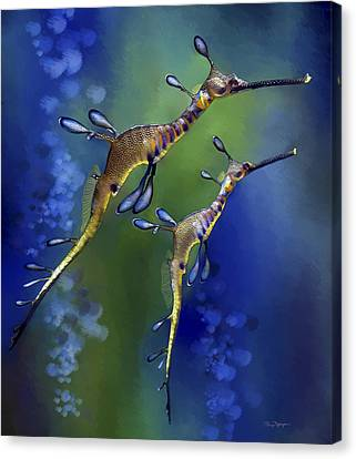 Weedy Sea Dragon Canvas Print by Thanh Thuy Nguyen
