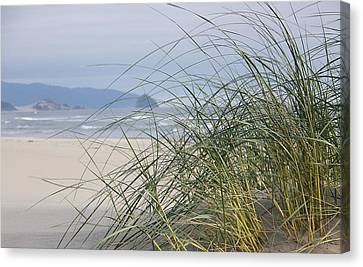 Weekend At The Beach Canvas Print by Angi Parks