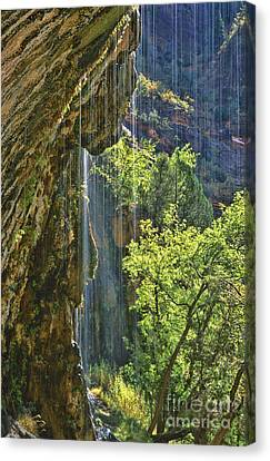 Weeping Rock - Zion Canyon Canvas Print